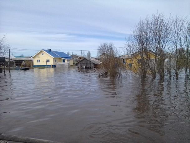 Уровень воды вреке Печора врайоне Усть-Цильмы начал понижаться