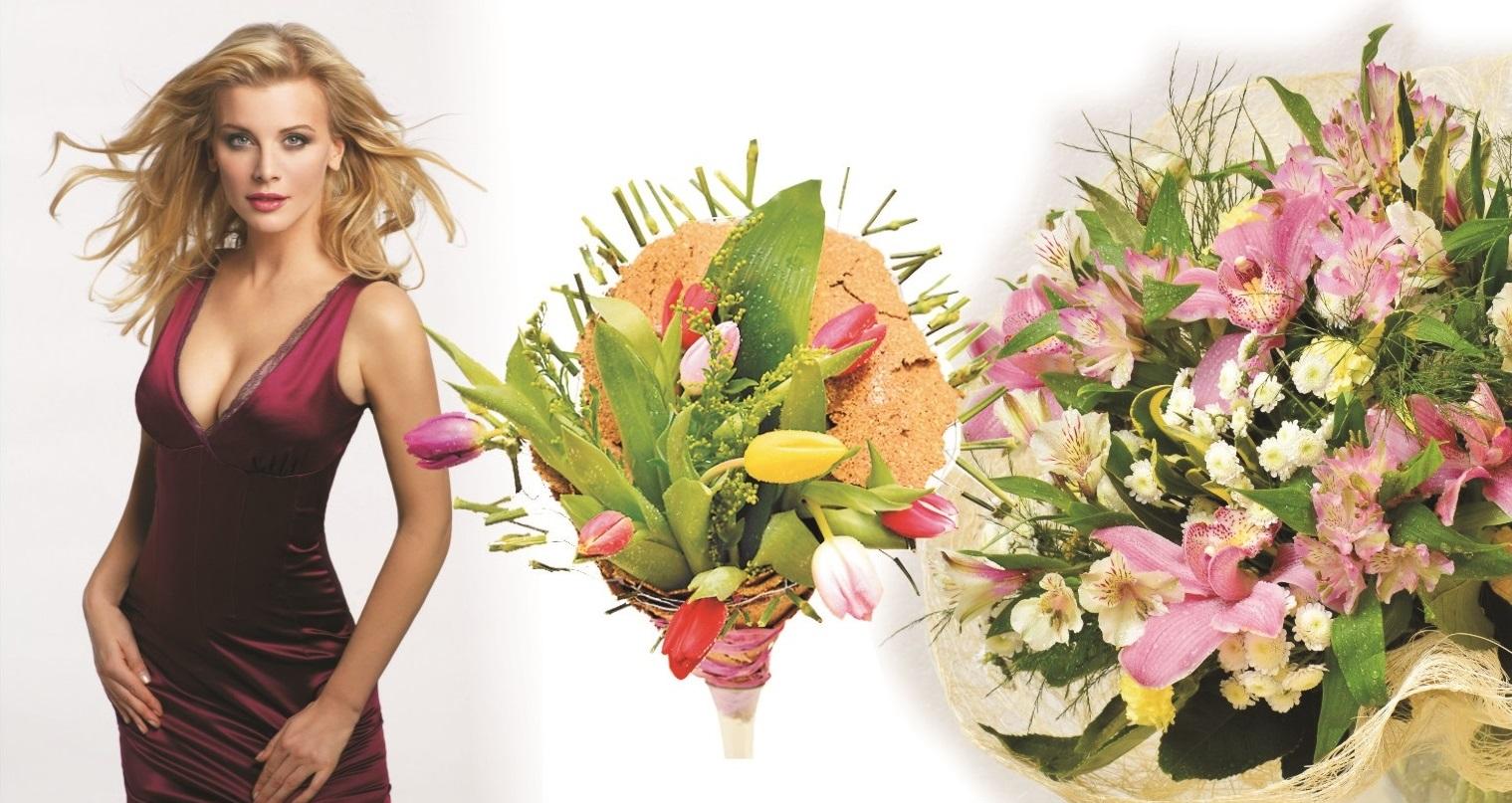 Купить цветы в сыктывкаре мича краснодар купить рассаду, кусты, цветы, озеленение дача