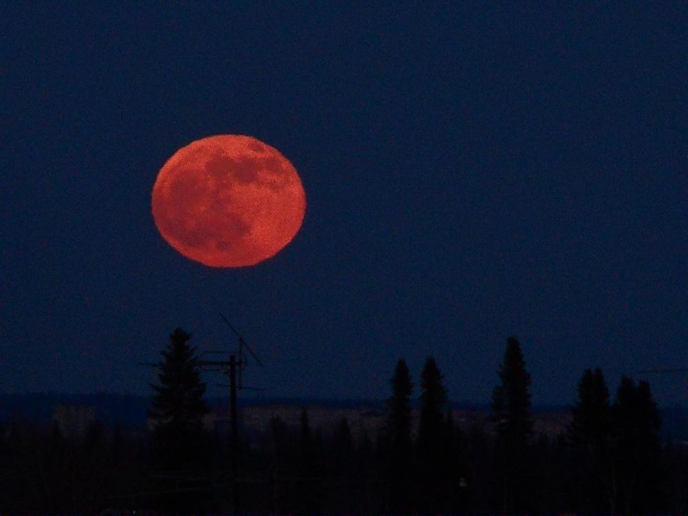 Бывает ли красная луна фото