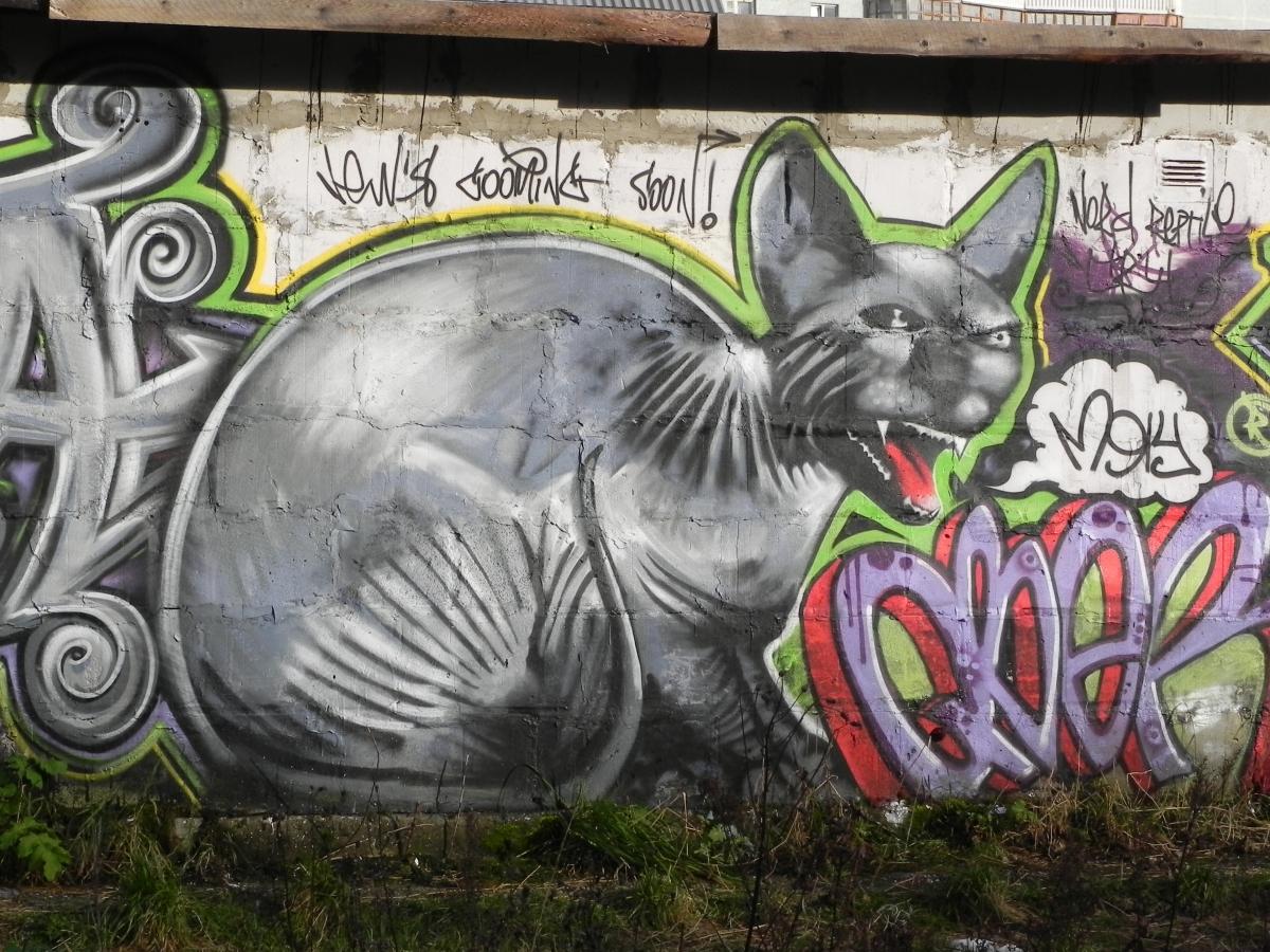 Как сделать граффити на стене фото 619