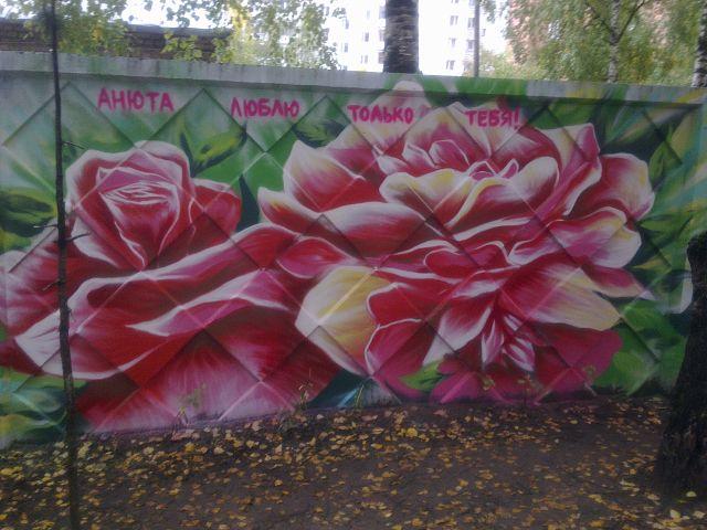 Рисунки цветов на заборе фото