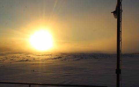 Погода в Сыктывкаре 25 февраля: «Мороз и солнце; день чудесный!»