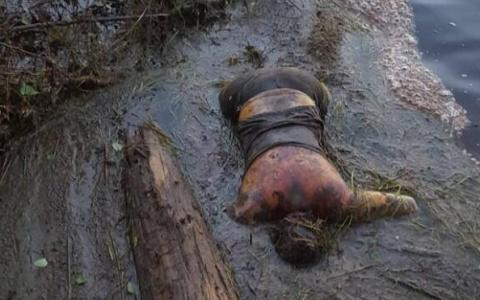 На реке в Коми нашли труп девушки с татуировкой