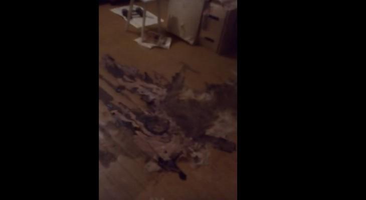 Сыктывкар за день 14 января: квартира для инвалида с останками трупа и охота на пьяных водителей