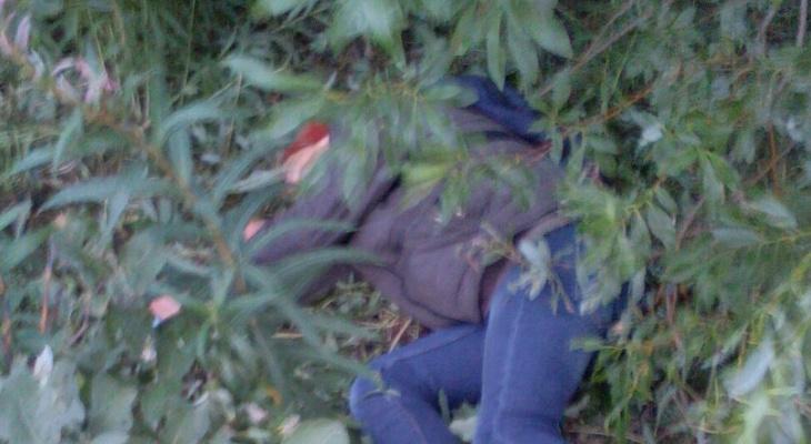 Он лежит в кустах — 9