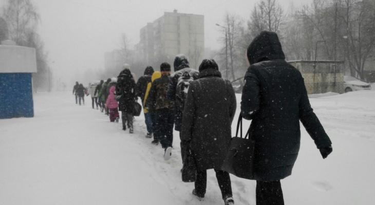 Жители Коми меняются на физиологическом уровне из-за жизни на севере