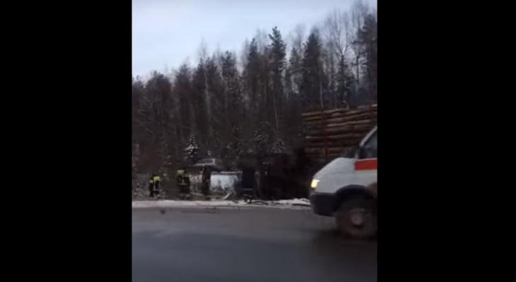 Водителя лесовоза, который столкнулся со школьным автобусом в Коми, откачали в реанимации