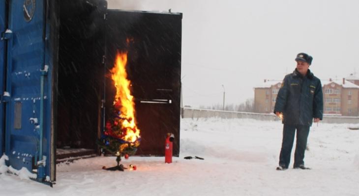 В Сыктывкаре сотрудники МЧС подожгли елку, чтобы показать, как надо ее тушить (фото)
