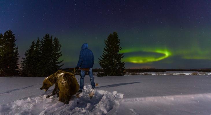 С медведем на поводке: жители республики сделали фотосессию в лучших коми традициях
