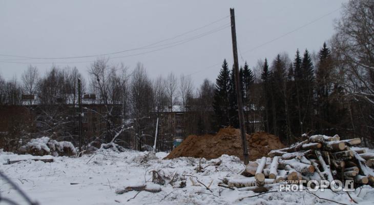 Стало известно, когда территорию ботсада СГУ в Сыктывкаре застроят высотками