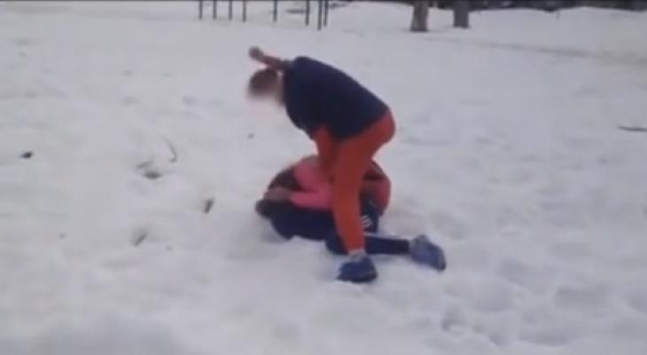 В школе Сыктывкара прокомментировали жестокую драку учениц