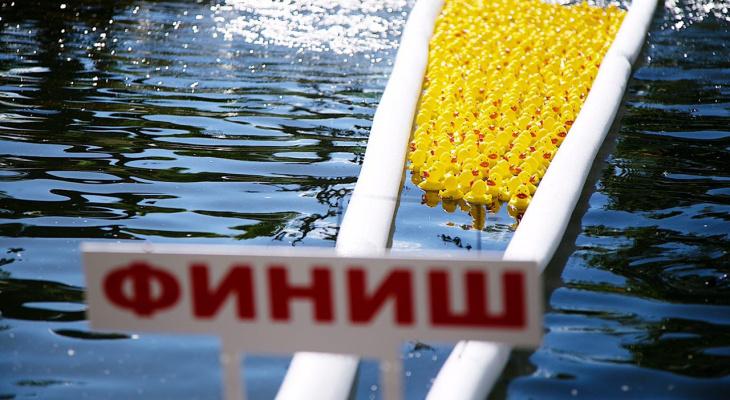Tele2 приглашает жителей Республики Коми принять участие в благотворительном заплыве резиновых утят