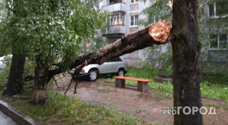 В Сыктывкаре ураган валил деревья на машины и срывал крыши (фото)