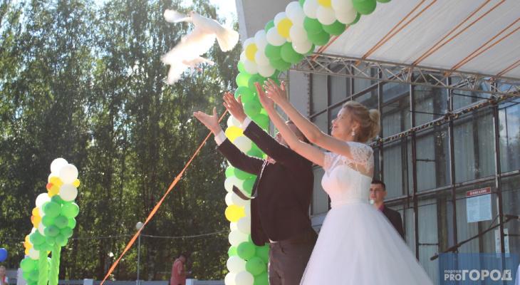 В Сыктывкаре на праздновании Дня семьи молодая пара выпустила в небо белых голубей (фото)