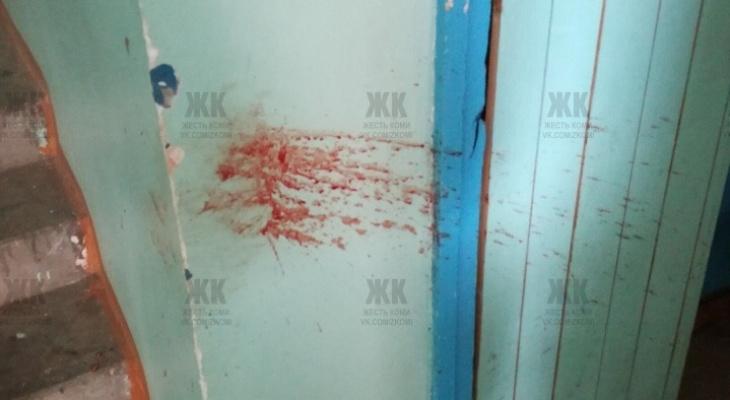 В Коми неизвестный зверски убил котенка (фото)