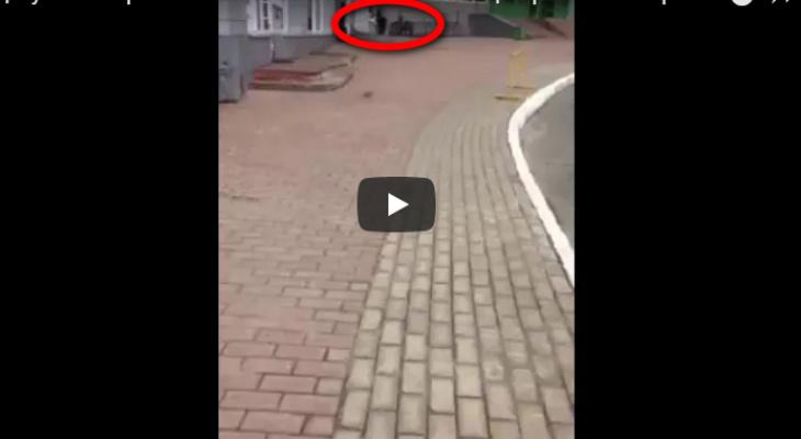 В Сыктывкаре девушка пыталась заняться сексом с парнем в центре города (видео)