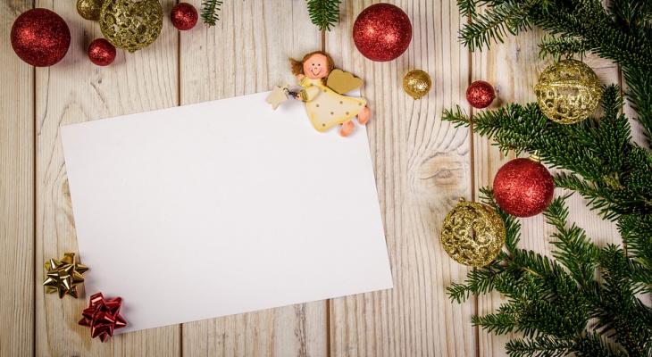 Письмо Деду Морозу: трогательная история о спасении щенка от 11-летнего сыктывкарца