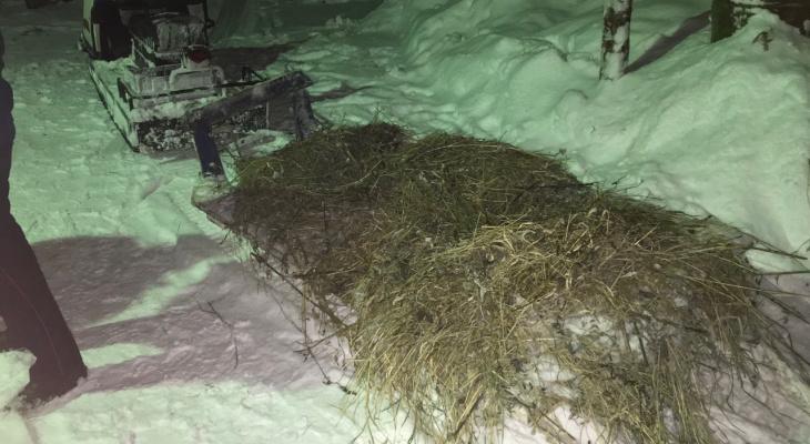 В Коми сильно пострадал пассажир саней, которые отцепились от снегохода