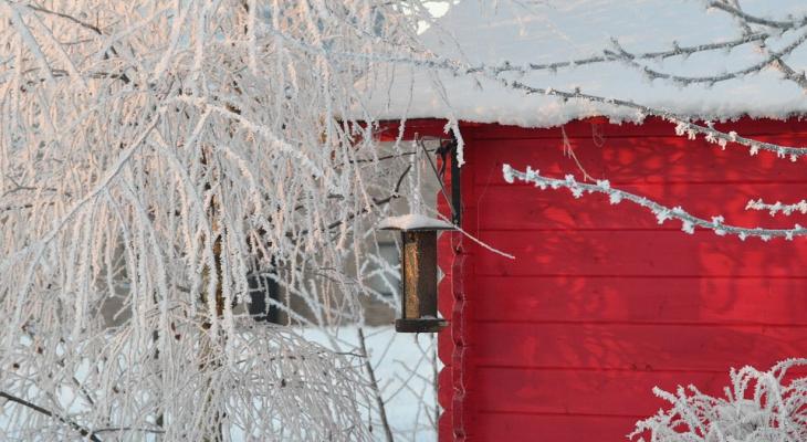 Письмо Деду Морозу: мечта сыктывкарки о доме для своей семьи
