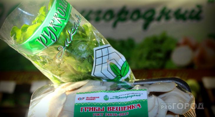 Фоторепортаж: как в Сыктывкаре выращивают рукколу и вешенки