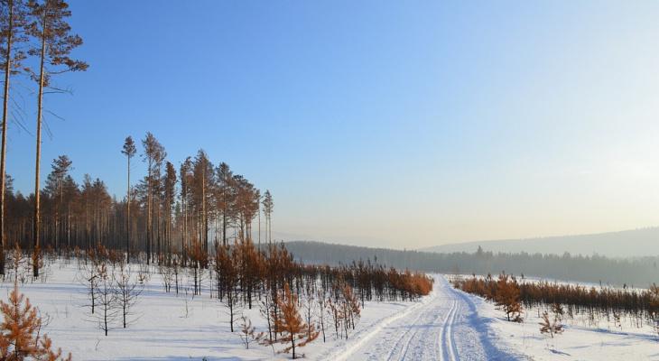 Погода в Сыктывкаре на 8 февраля: меньше снега, больше морозов
