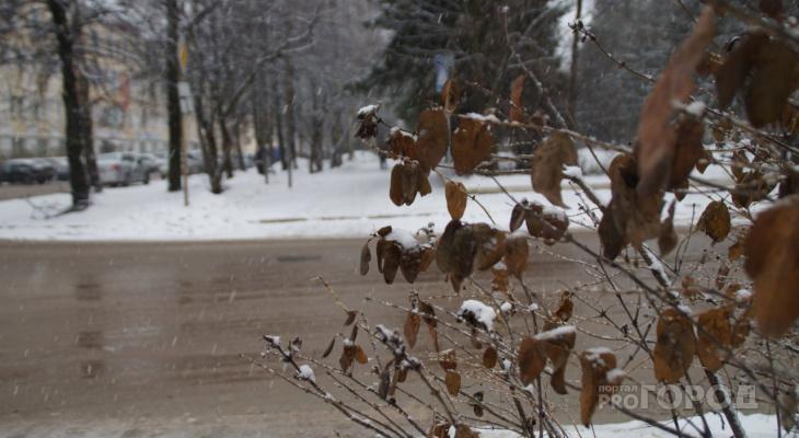 В выходные в Сыктывкаре наступит аномально теплая погода