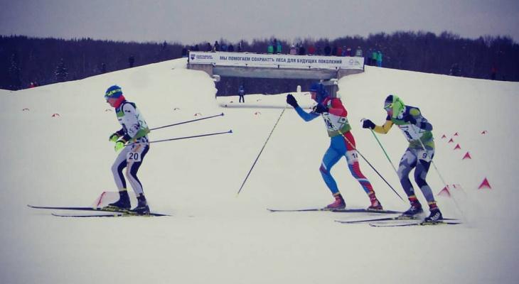 Фото дня от сыктывкарца: спортивный отдых на лыжне