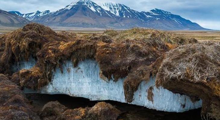 В 2019 году ученые из Коми будут осваивать Арктику