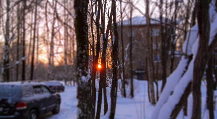 Погода в Сыктывкаре на 17 февраля: и снова снегопад