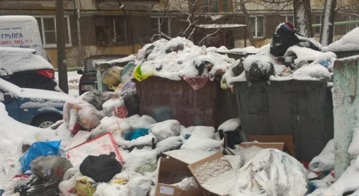 Лишняя строка в квитанции, автохамы и горы мусора: на что жаловались сыктывкарцы на этой неделе