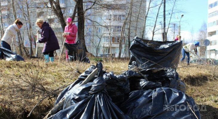 Жители Сыктывкара сплотятся в битве против мусора и прошлогодних бутылок