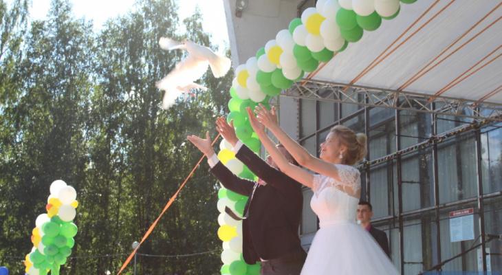 Сезон свадеб: как и когда сыктывкарцам подавать заявление в загс