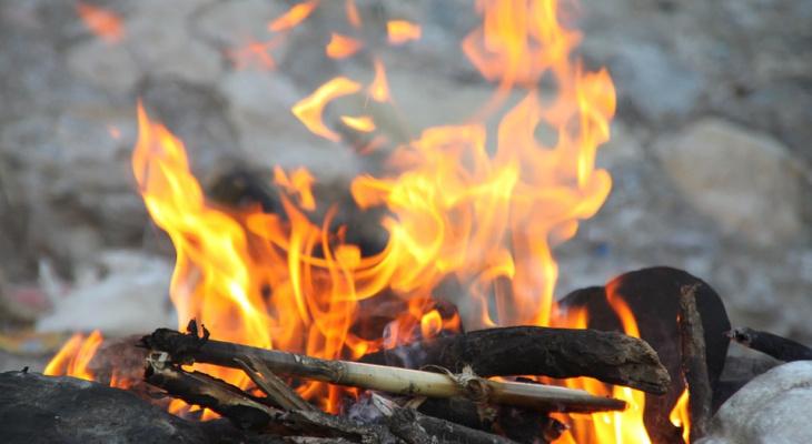 В Сыктывкаре объявлен особый противопожарный режим