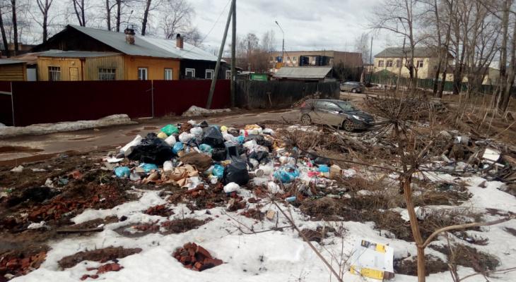 Под Сыктывкаром от мусора очистят шесть тысяч квадратных метров земли