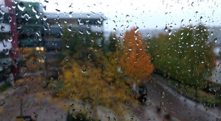Погода в Сыктывкаре на 16 мая: северо-западный ветер и дожди