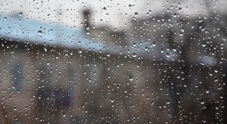 Погода в Сыктывкаре на 17 мая: сильный ветер и хмурое небо
