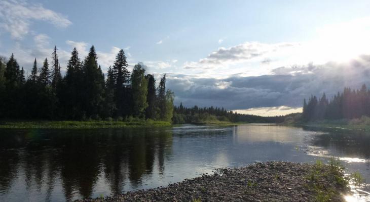 Спасение одной из самых грязных рек Коми оценили в полмиллиарда рублей