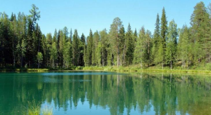 На реках Коми ищут сразу пять человек