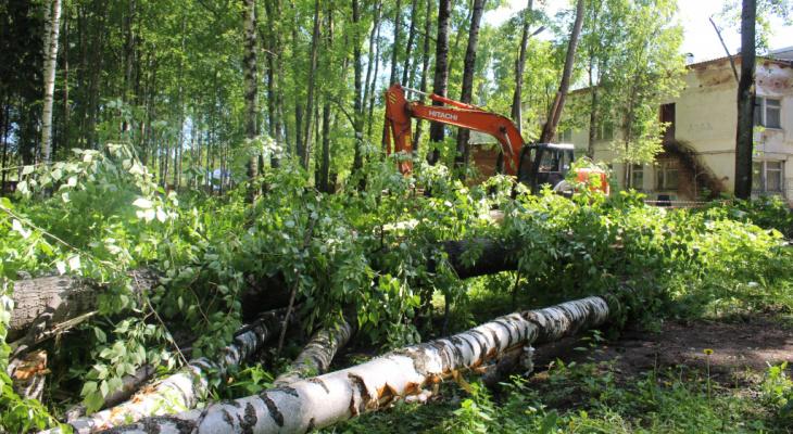 Сыктывкарцы о вырубке деревьев в «Строителе»: «Орки мордорские, оставьте уже деревья в покое»