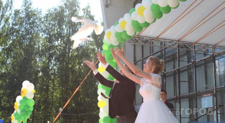 Стало известно, как в Сыктывкаре отпразднуют День семьи