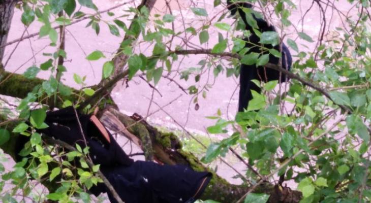 Сыктывкарка: «Моя соседка устраивает 4-дневные оргии и не дает нам жить»