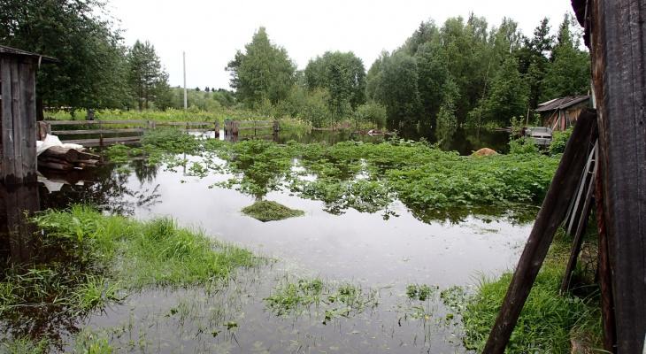 «Ситуация критическая»: в коми селе, где унесло мост с машинами, топит огороды и жилые дома (фото)