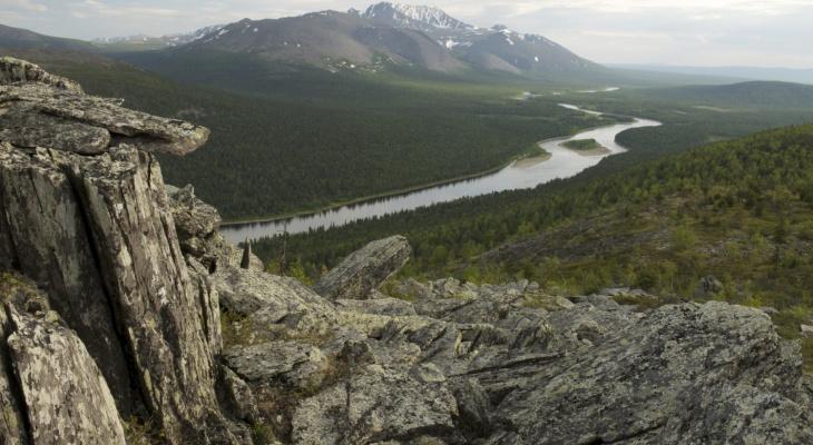 Greenpeace бьет тревогу: в национальном парке Коми собираются добывать золото