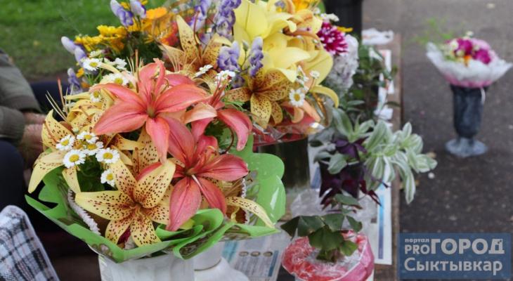 Букет к 1 сентября: где и за сколько купить цветы в Сыктывкаре (фото)