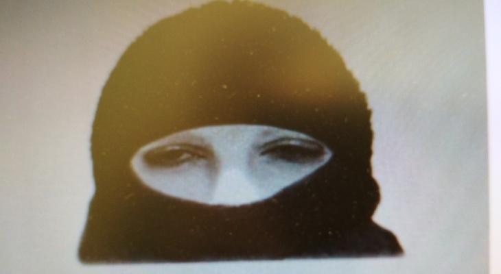 В Сыктывкаре разыскивают налетчика с подарочным пакетом, который украл 145 тысяч рублей