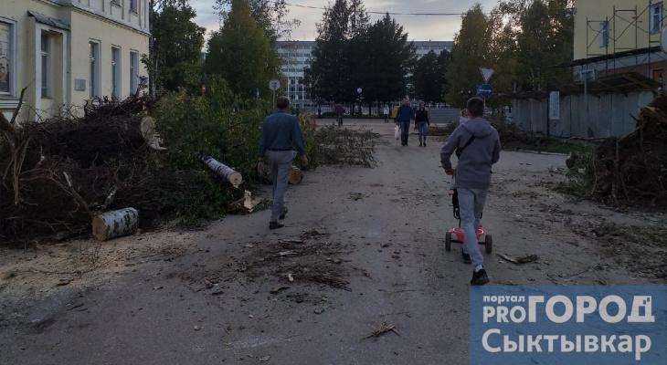 Выяснилось, зачем на одной из улиц Сыктывкара массово срубили деревья