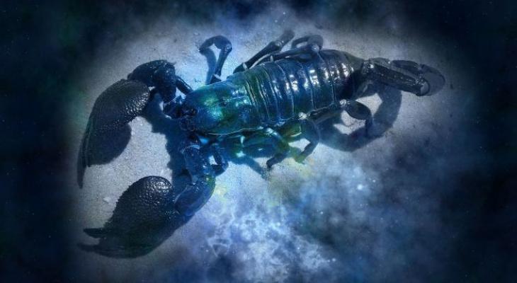 Гороскоп на 8 сентября: Скорпионов ждет мрачная атмосфера, а Раки найдут баланс и взаимопомощь