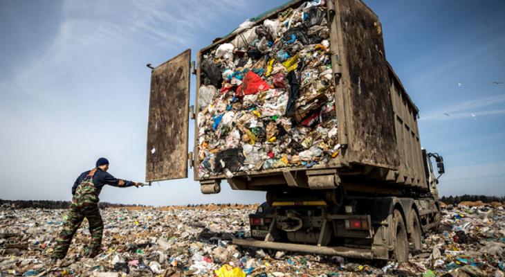 «То, что лес очистили — молодцы, ну а дальше-то что?»: куда девается собранный мусор