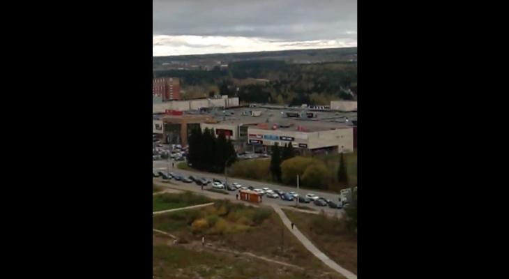 В Сыктывкаре из-за стада коров «встал» Октябрьский проспект (видео)