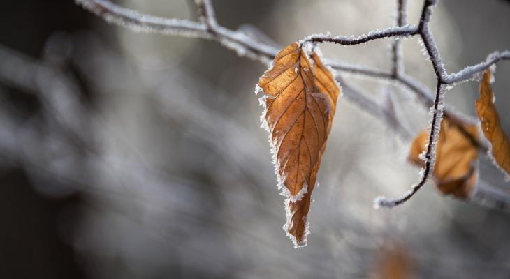 Погода в Сыктывкаре на 24 сентября: ледяное утро и вечерний снегопад